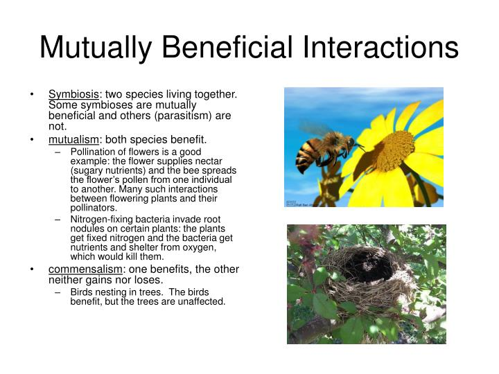 Mutually Beneficial Interactions