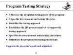 program testing strategy