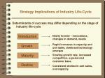 strategy implications of industry life cycle