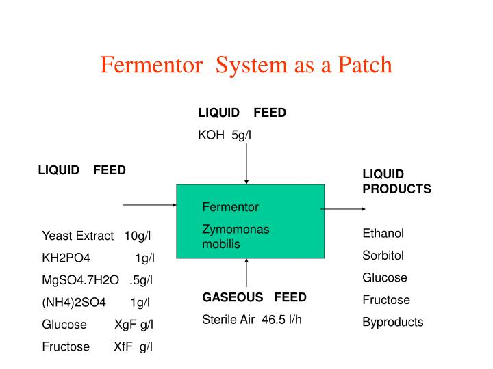 Fermentor  System as a Patch