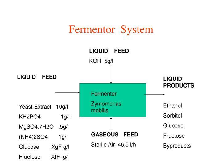 Fermentor  System