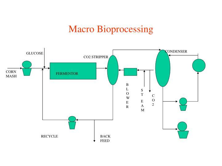 Macro Bioprocessing