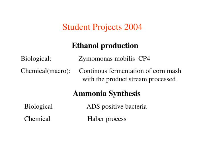 Student Projects 2004