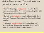 4 4 3 m canismes d acquisition d un plasmide par une bact rie