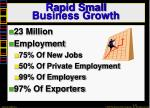 rapid small business growth