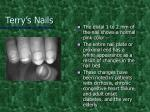 terry s nails