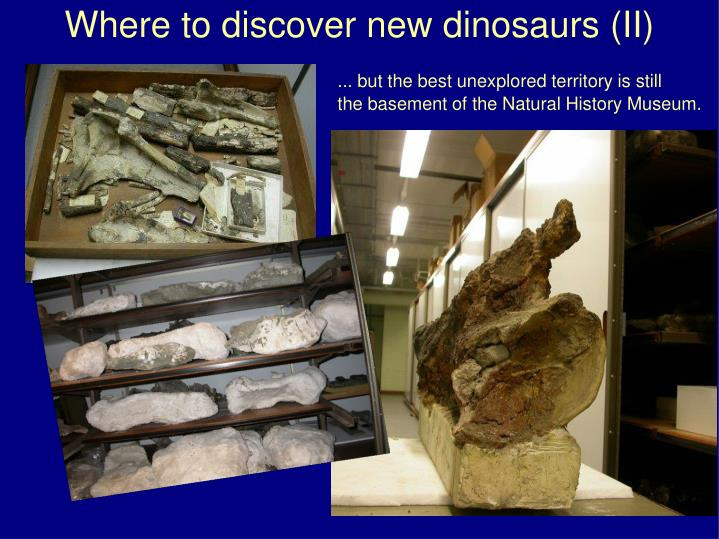 Where to discover new dinosaurs (II)