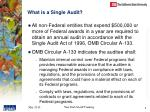 what is a single audit