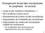 changement brutal des microtubules en prophase le constat