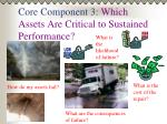 core component 3 which assets are critical to sustained performance