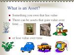 what is an asset