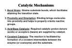 catalytic mechanisms