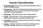 enzyme classes reactions