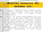 l mites exte rn os del abdomen son