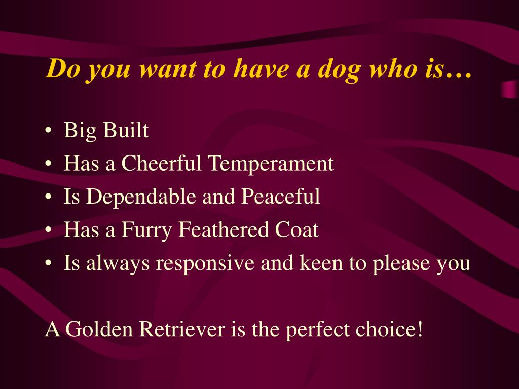 Do you want to have a dog who is…
