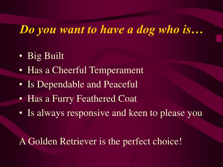 Do you want to have a dog who is