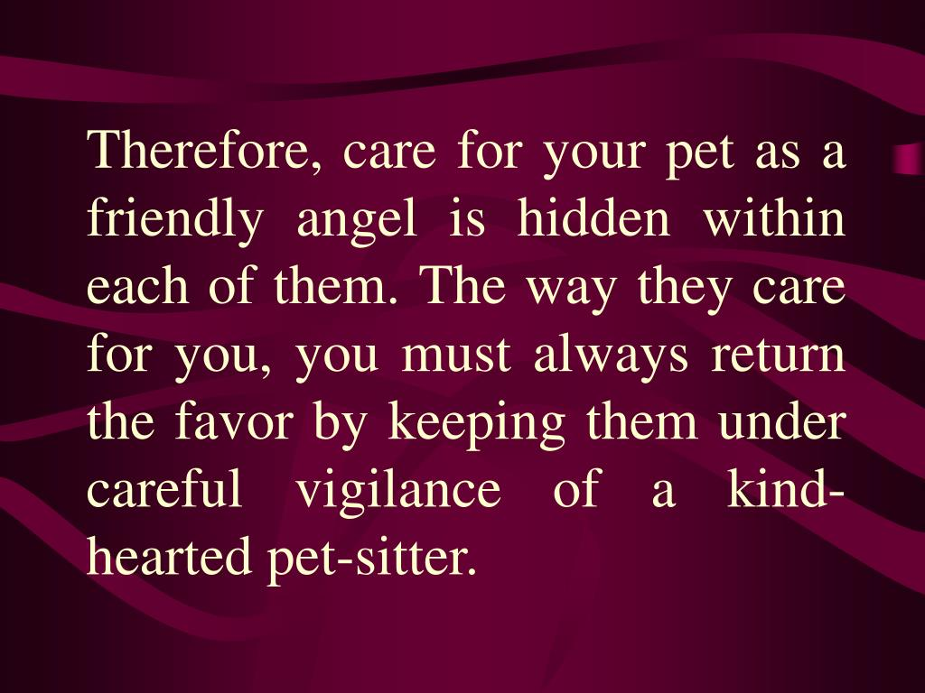 Therefore, care for your pet as a friendly angel is hidden within each of them. The way they care for you, you must always return the favor by keeping them under careful vigilance of a kind-hearted pet-sitter.