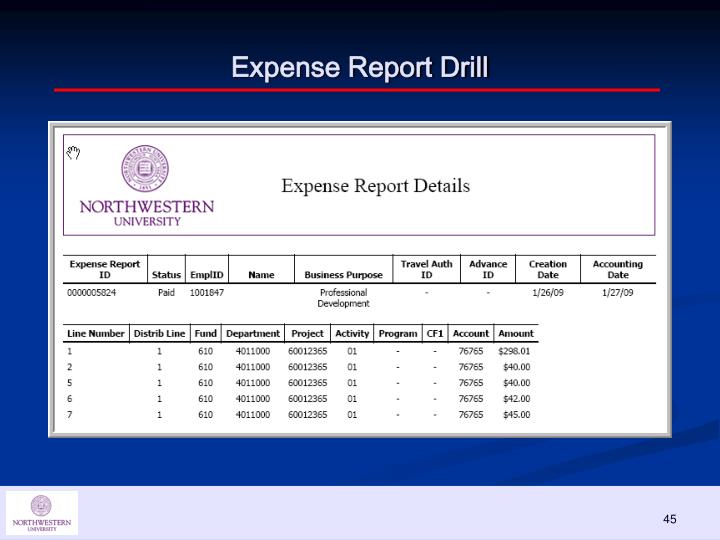Expense Report Drill