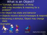 what is an object