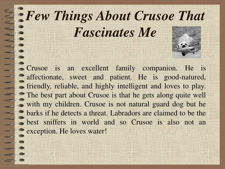 Few things about crusoe that fascinates me