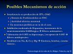 posibles mecanismos de acci n