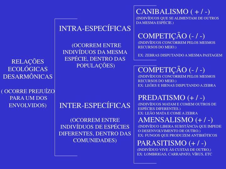 CANIBALISMO ( + / -)