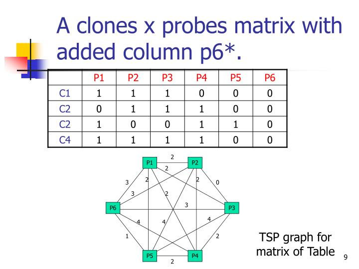 A clones x probes matrix with added column p6*.