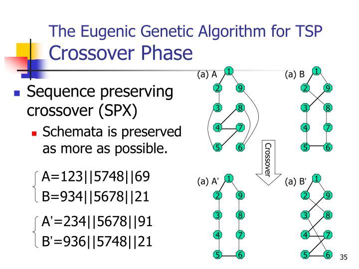 The Eugenic Genetic Algorithm for TSP