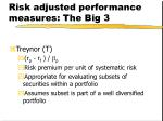 risk adjusted performance measures the big 31