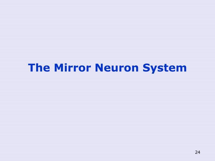 The Mirror Neuron System