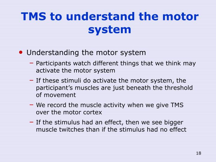 TMS to understand the motor system