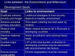 links between the environment and millennium development goals