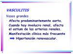 vasculitis1