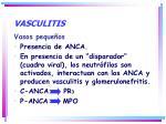 vasculitis6