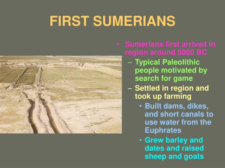 first sumerians n.
