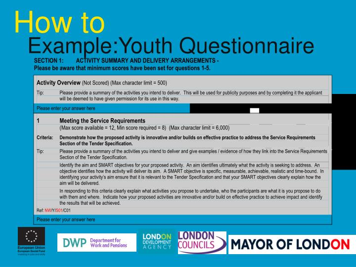 Example:Youth Questionnaire