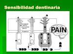 sensibilidad dentinaria
