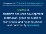component 4 prenatal postnatal supports