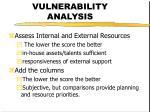 vulnerability analysis7