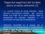 impactos negativos del turismo sobre el medio ambiente 1