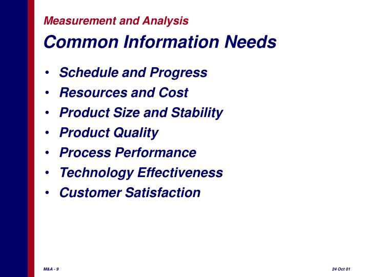 Common Information Needs