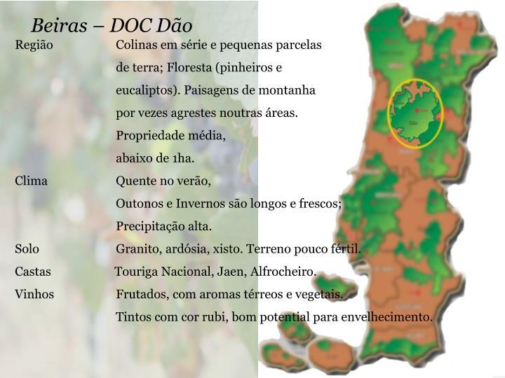 Beiras – DOC Dão