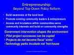 entrepreneurship beyond top down policy reform