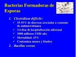 bacterias formadoras de esporas
