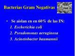 bacterias gram negativas