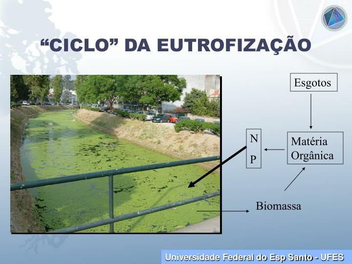 """""""CICLO"""" DA EUTROFIZAÇÃO"""