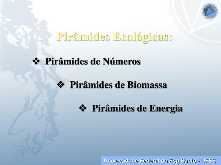 Pirâmides Ecológicas: