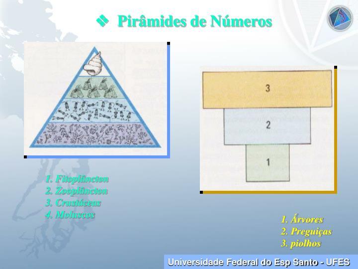   Pirâmides de Números
