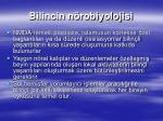 bilincin n robiyolojisi1
