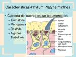 caracter sticas phylum platyhelminthes1